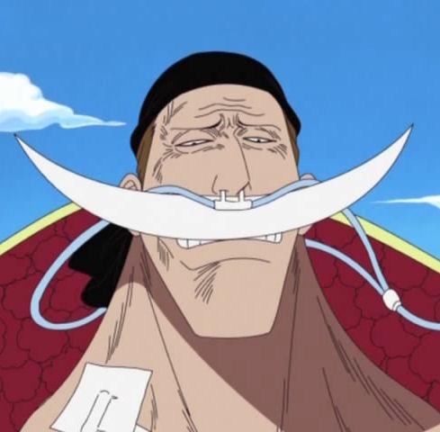Whitebeard One Piece Absolute Anime