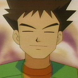Brock Pok 233 Mon Absolute Anime
