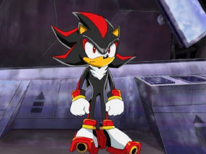 Shadow the Hedgehog • Sonic X • Absolute Anime